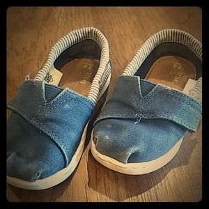 Toms Toddler size 6